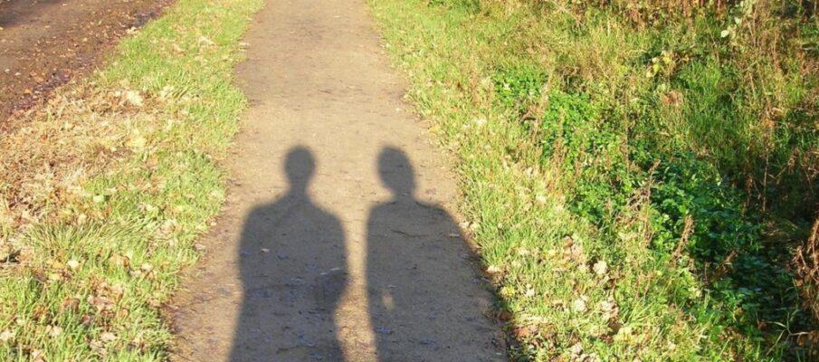 shadowplay-1572654-1279x1705